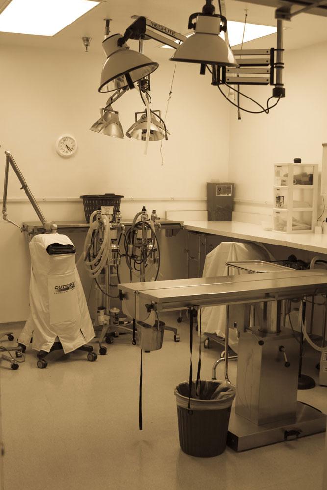 Surgery-Room-Blkwht